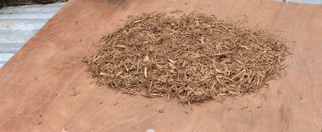 gabon-iboga-rootbark-shredded